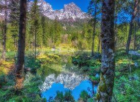 Заставки горы, водоём, лес