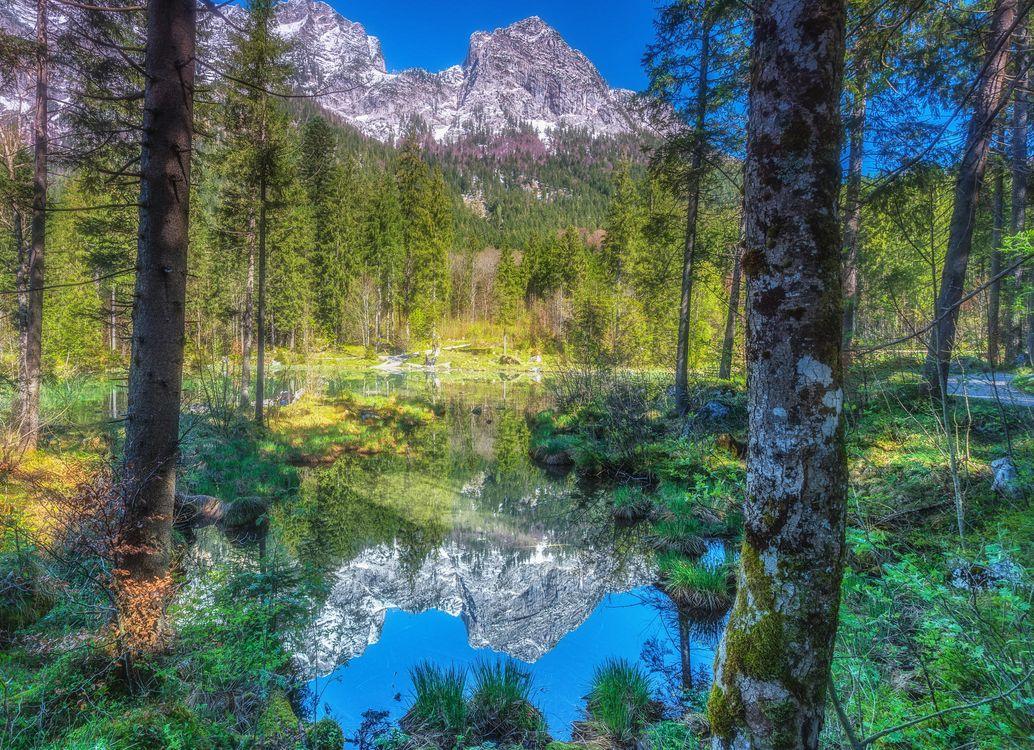 Фото бесплатно горы, водоём, лес - на рабочий стол