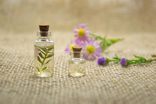 Photo free aromatherapy, cosmetic oil, essential oil