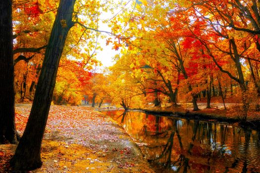 Photo free river, colorful, day