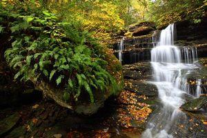 Бесплатные фото Государственный парк Рикеттс Глен,Соединенные Штаты,Пенсильвания,осень,река,скалы,водопад