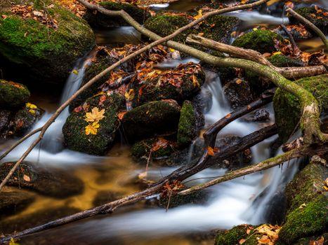Заставки водопад, осенние листья, ветки