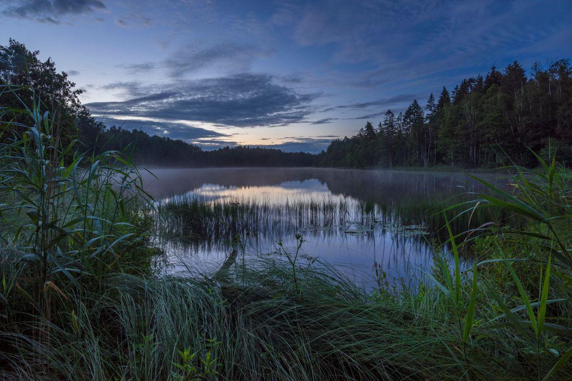 Фото бесплатно закат, озеро, деревья, Норвегия, пейзаж, пейзажи
