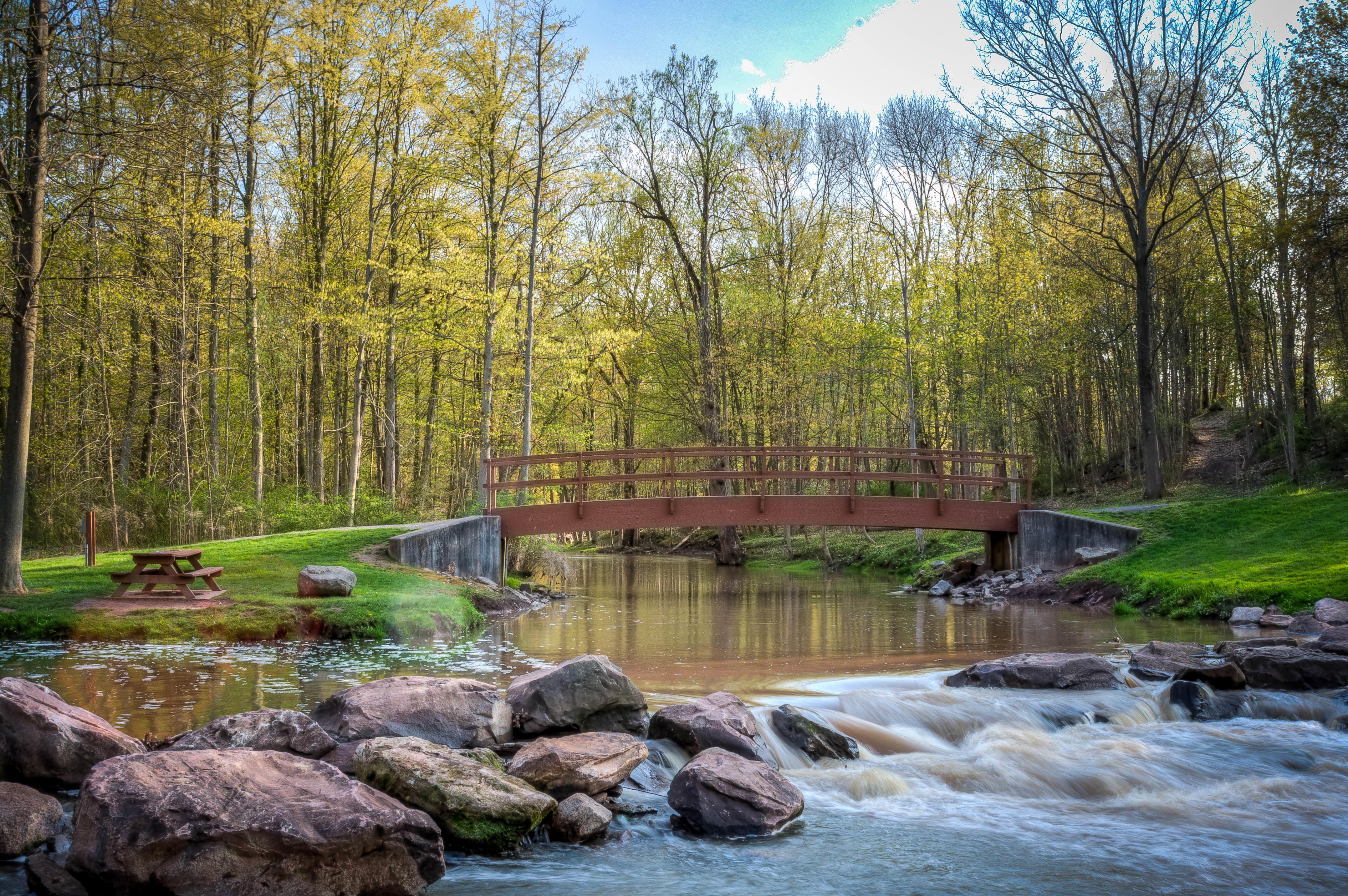 обои река, мост, осень, деревья картинки фото