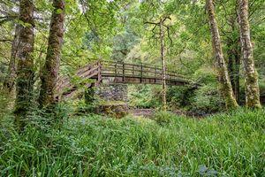 Фото бесплатно Округ Дерри Лондондерри, Северная Ирландия, река