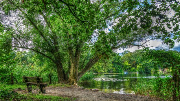 Фото бесплатно Берлин, парк, озеро, лавочка, деревья, пейзаж