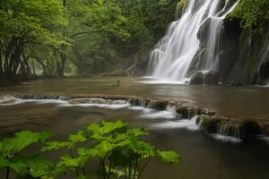 Заставки водопад, водоём, деревья