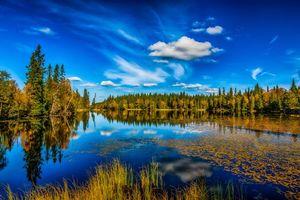 Фото бесплатно озеро, осень, лес