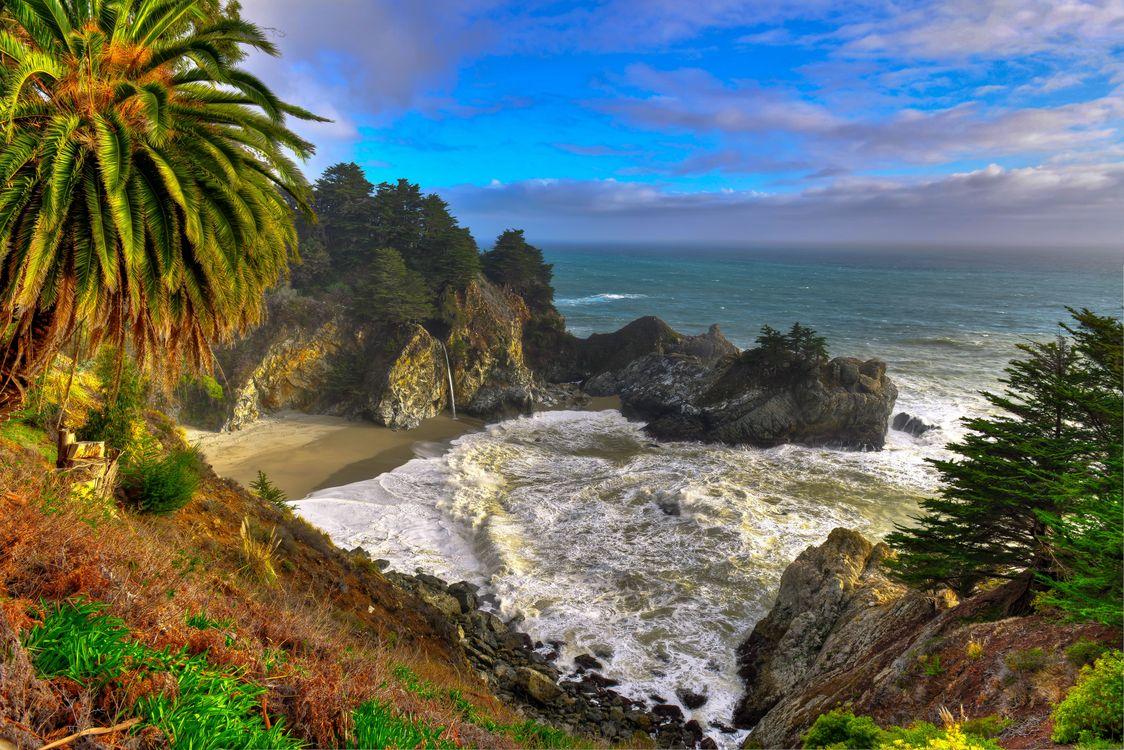 Фото бесплатно Калифорния, берег, Джулия Парк Пфайффер Берн - на рабочий стол