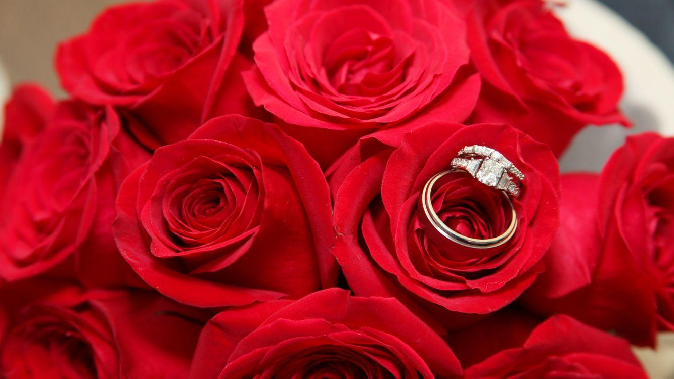 Розы и обручальное кольцо · бесплатное фото