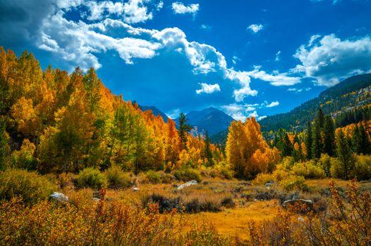 Фото бесплатно пейзаж, осенние пейзажи, горы калифорнии