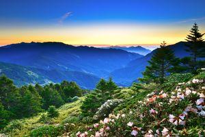 Бесплатные фото закат, горы, холмы, деревья, цветы, природа, пейзаж