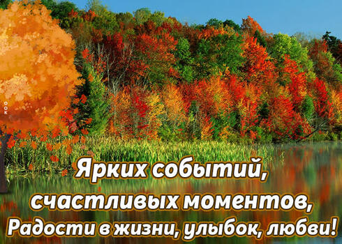 Postcard free for you with love, autumn, trees