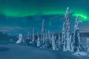 Бесплатные фото Лапландия,зима,снег,деревья,сугробы,пейзаж,сияние
