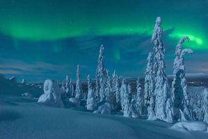 Фото бесплатно Лапландия, зима, снег, деревья, сугробы, пейзаж, сияние