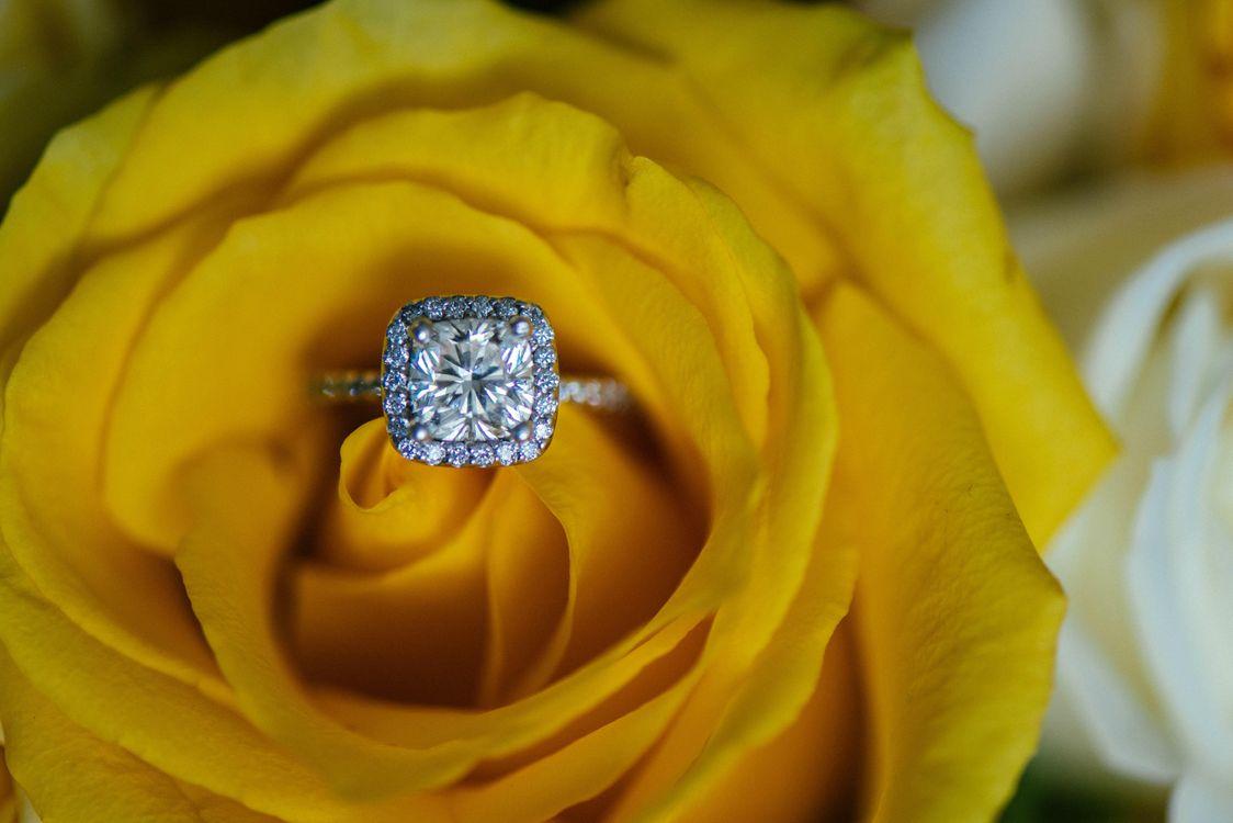 Фото бесплатно роза, обручальное кольцо, подарок - на рабочий стол