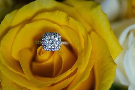 роза,обручальное кольцо,подарок,желтые розы,свадьба