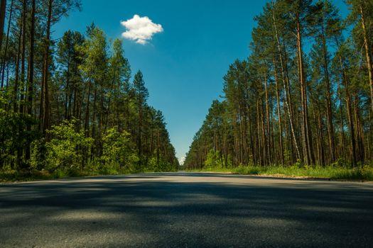 Photo free long road, trees, sky