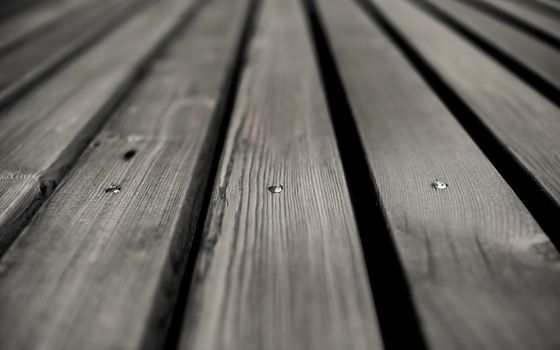 Photo free wooden floor, bench, black and white