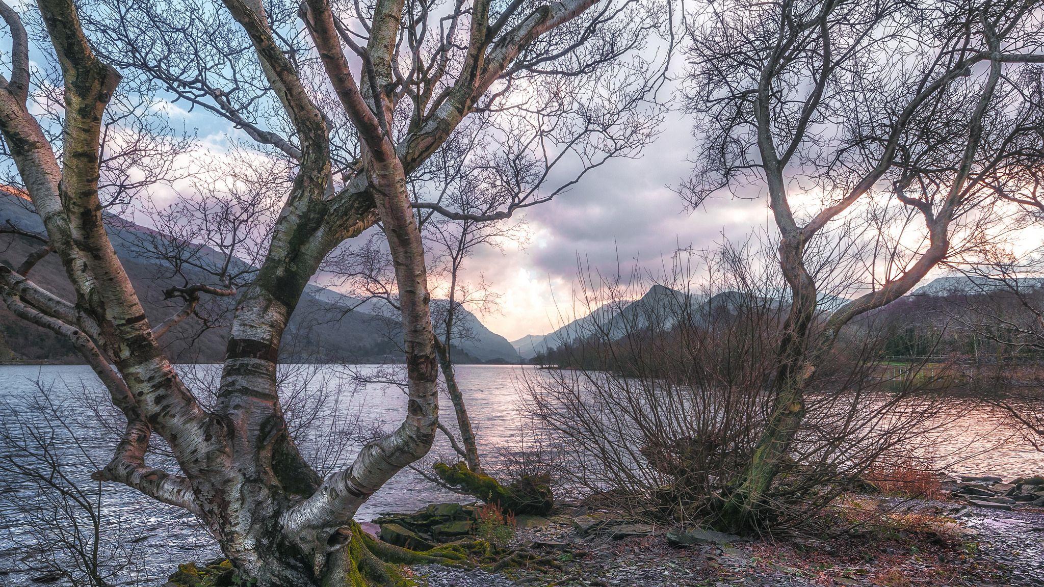обои закат, озеро, горы, деревья картинки фото