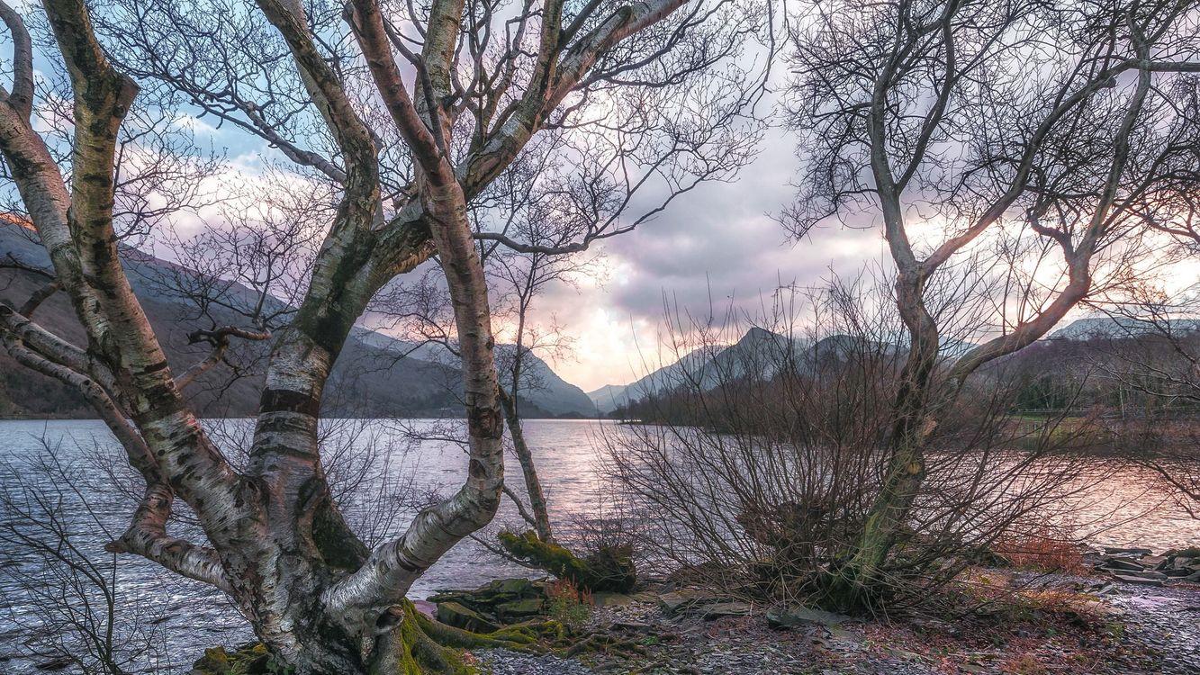 Картинка закат, озеро, горы, деревья, пейзаж на рабочий стол. Скачать фото обои пейзажи