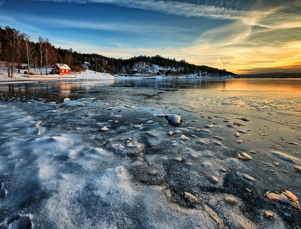 Фото бесплатно Норвегия, лес, море - на рабочий стол