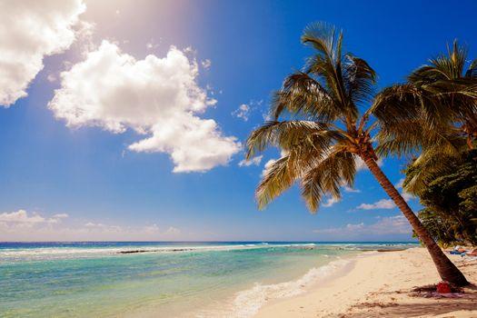 Фото пляж, тропики больших размеров