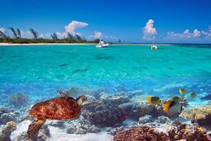 Бесплатные фото море,тропики,остров,яхты,природа