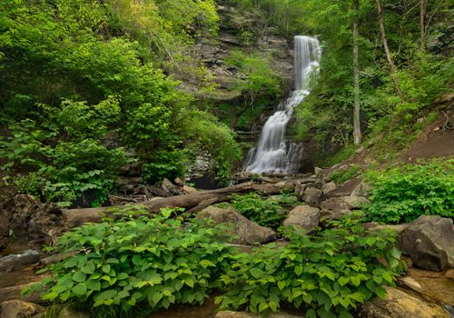 Фото бесплатно парковые водопады, каменные водопады, парки