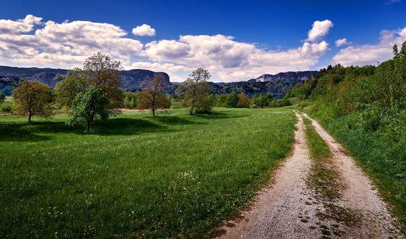Заставки Springtime, Slovenia, поле