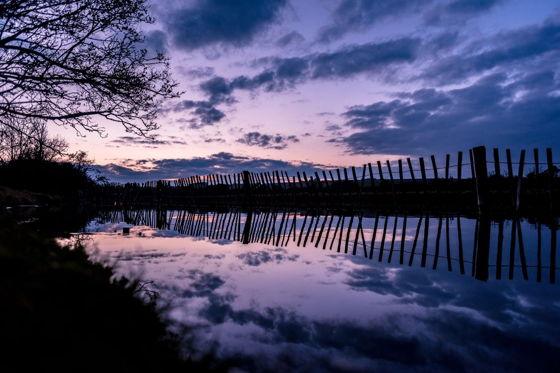 Фото бесплатно дерево, река, забор - на рабочий стол