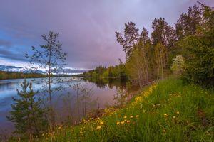 Фото бесплатно озеро, деревья, цветы