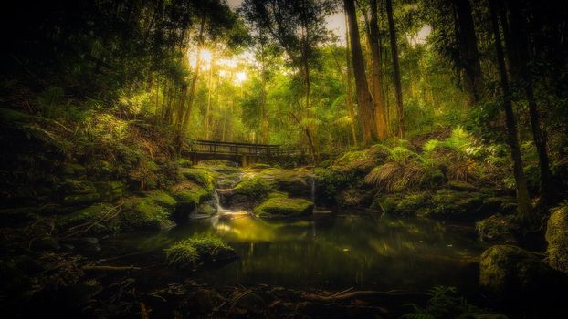Photo free sun, bridge, Creek