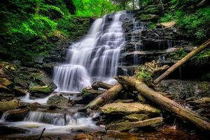 Фото бесплатно скалы, деревья, Ricketts Glen State Park