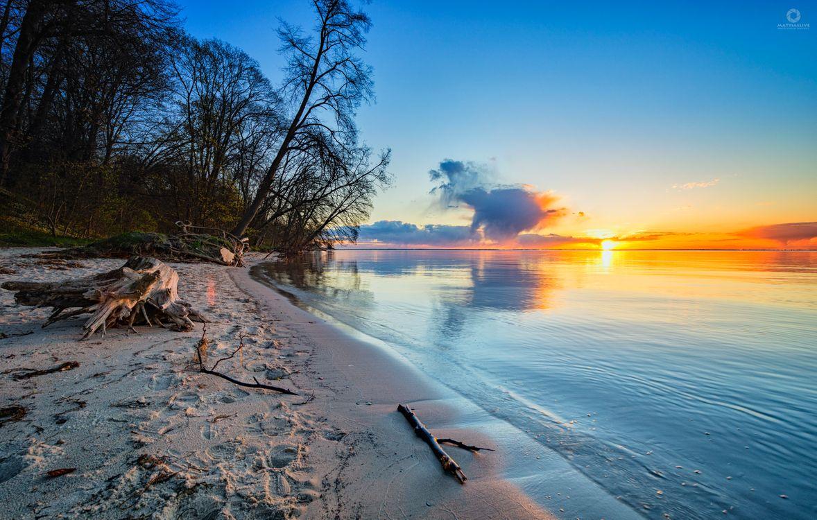 Фото бесплатно берег, песок, деревья - на рабочий стол
