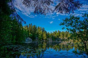 Бесплатные фото Wonderful Lake,Norway,озеро,лес,деревья,пейзаж