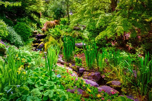 Photo free Botanical garden, park, stream