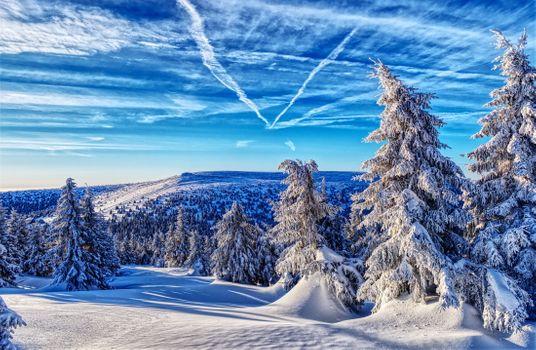 Фото бесплатно Jeseniky Mountains, пейзаж, Czech Republic