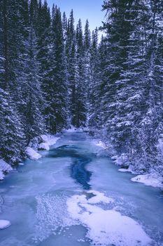 Фото бесплатно лес, зимние фоны, река