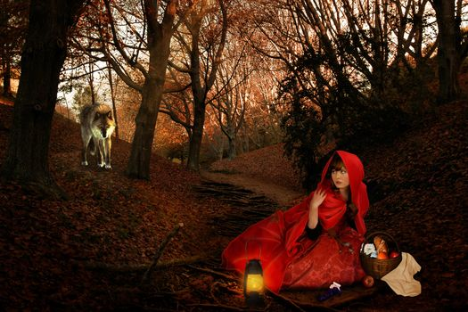Little red riding hood and grey wolf · free photo