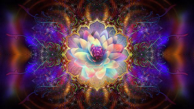 Бесплатные фото лилия,абстракция,фон,цвет,форма,текстура,фрактал,wallpapers