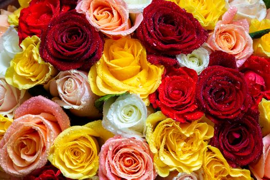 Roses in the bouquet · free photo