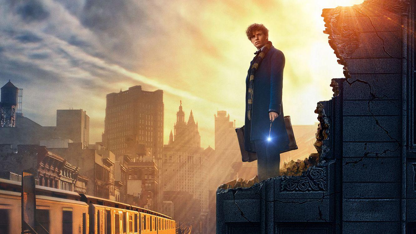 Обои Fantastic Beasts And Where To Find Them, 2016 Movies, Movies картинки на телефон