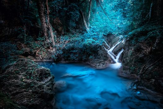 Photo free forest, backlight, waterfall