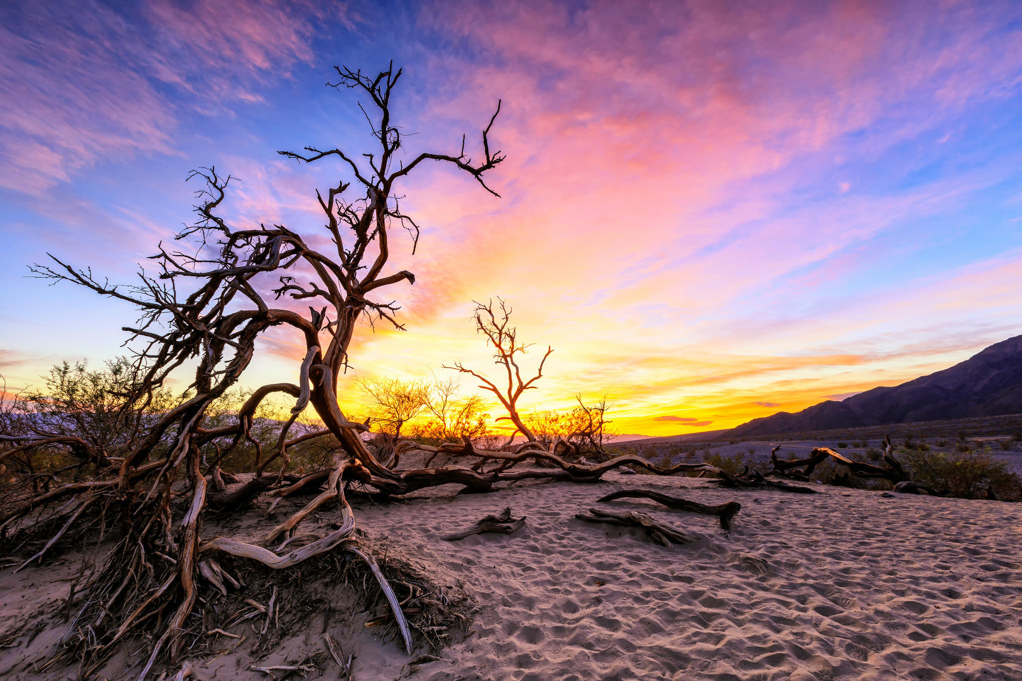 Обои Рассвет на дюнах