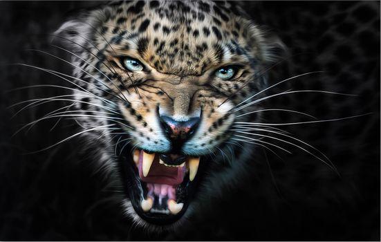 Заставки леопард, ярость, животное
