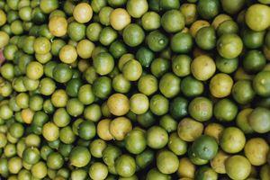 Photo free fruits, citrus fruits, lime