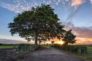 Заставки Страбэйн, графство Тайрон, Северная Ирландия