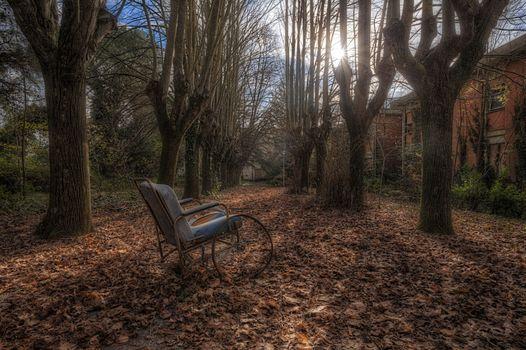 Photo free trees, autumn, house