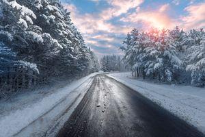 Деревья в снегу и утренняя поездка